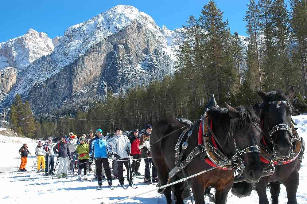 ドロミテラガッツオーイからアルメンタローラへ。ここでリフトではなく2頭だての馬に引かれてアルメンタローラへ