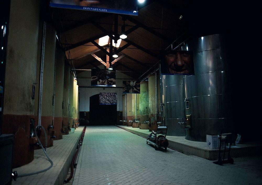 シチリアワイン、ドンナフガータワイナリー、マルサーラ