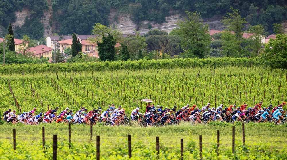 フランチャコルタのブドウ畑を走る、ジーロ・ディイタリア